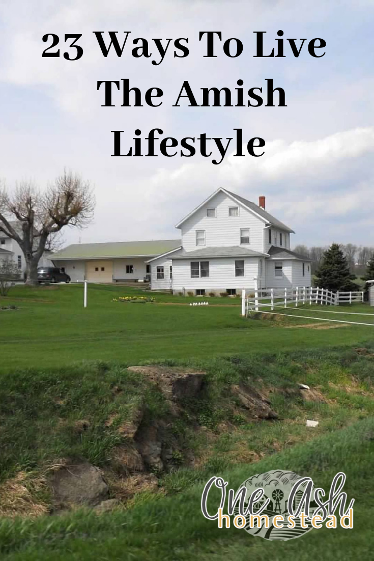 where do the amish live